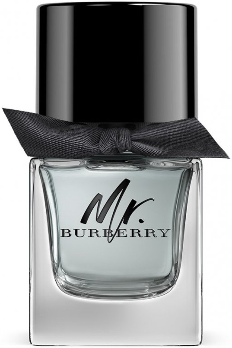 Burberry Mr. Burberry - 50 ml - eau de toilette