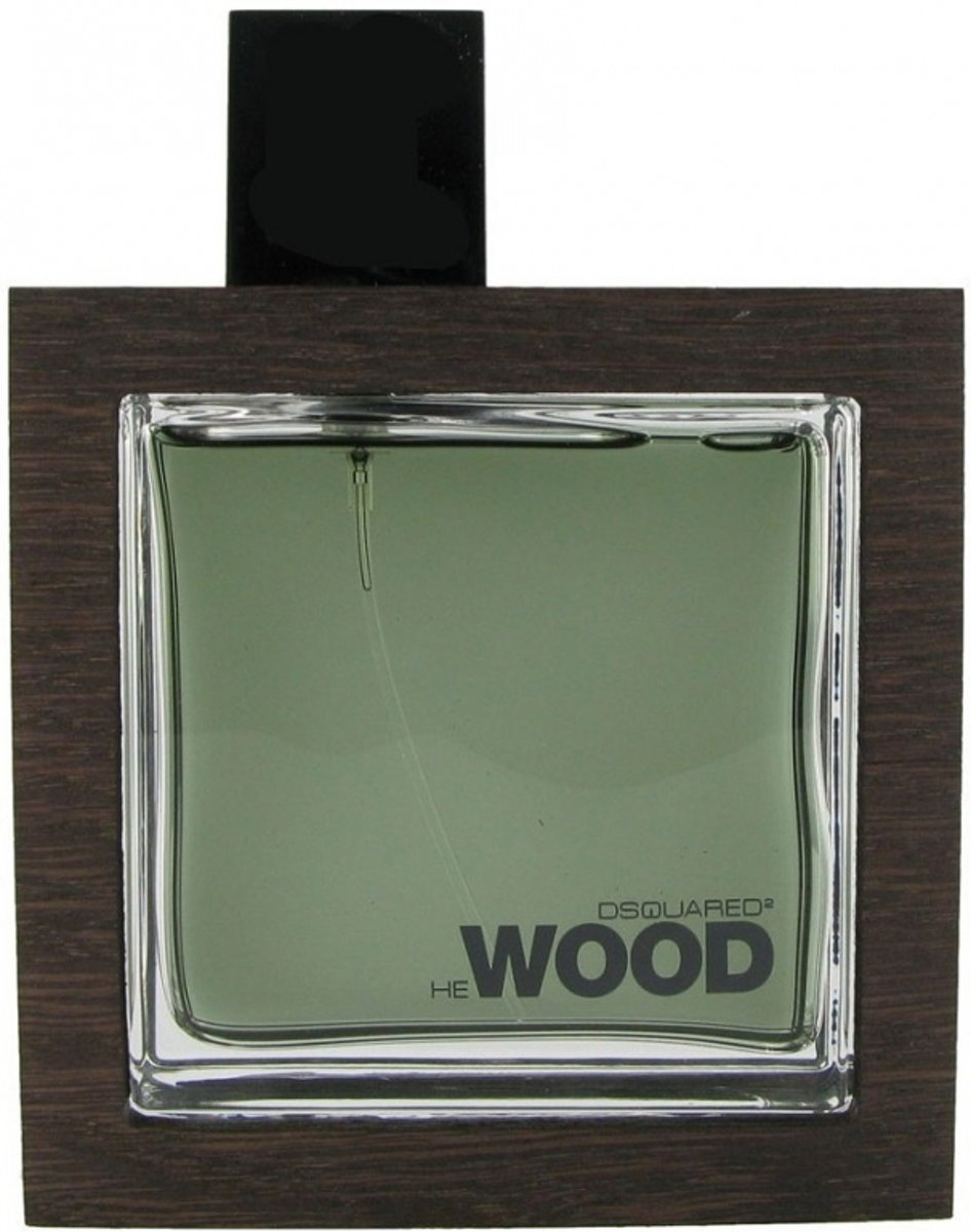 Dsquared Rocky Mountain 100 ml - Eau de toilette - Herenparfum