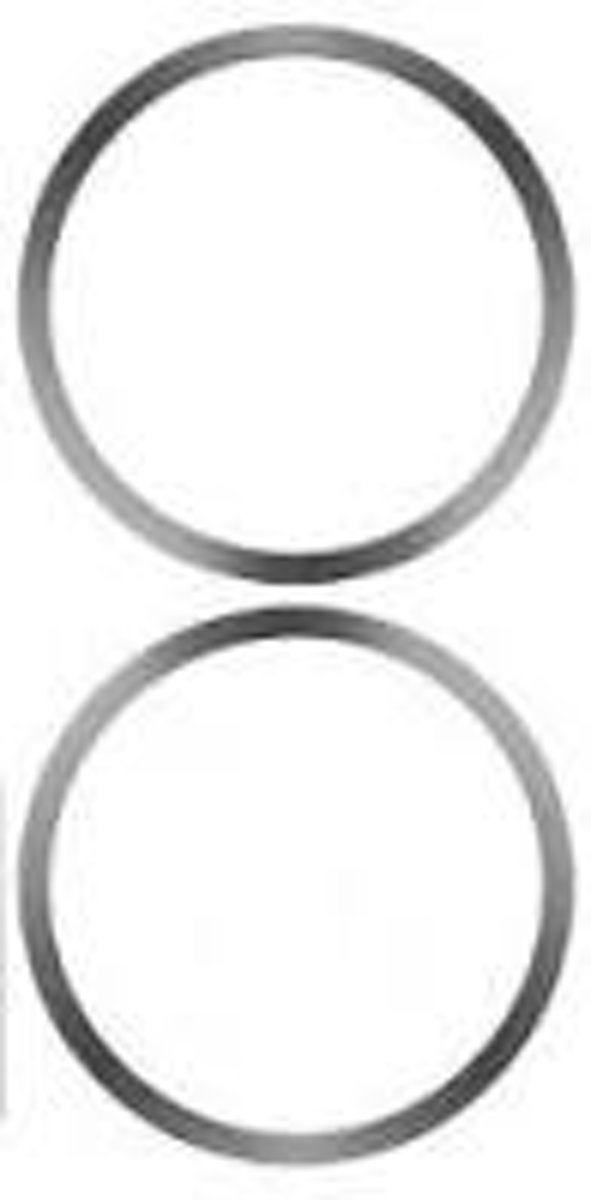 SIGG Replacement Springs For Abt 2 pcs. clear