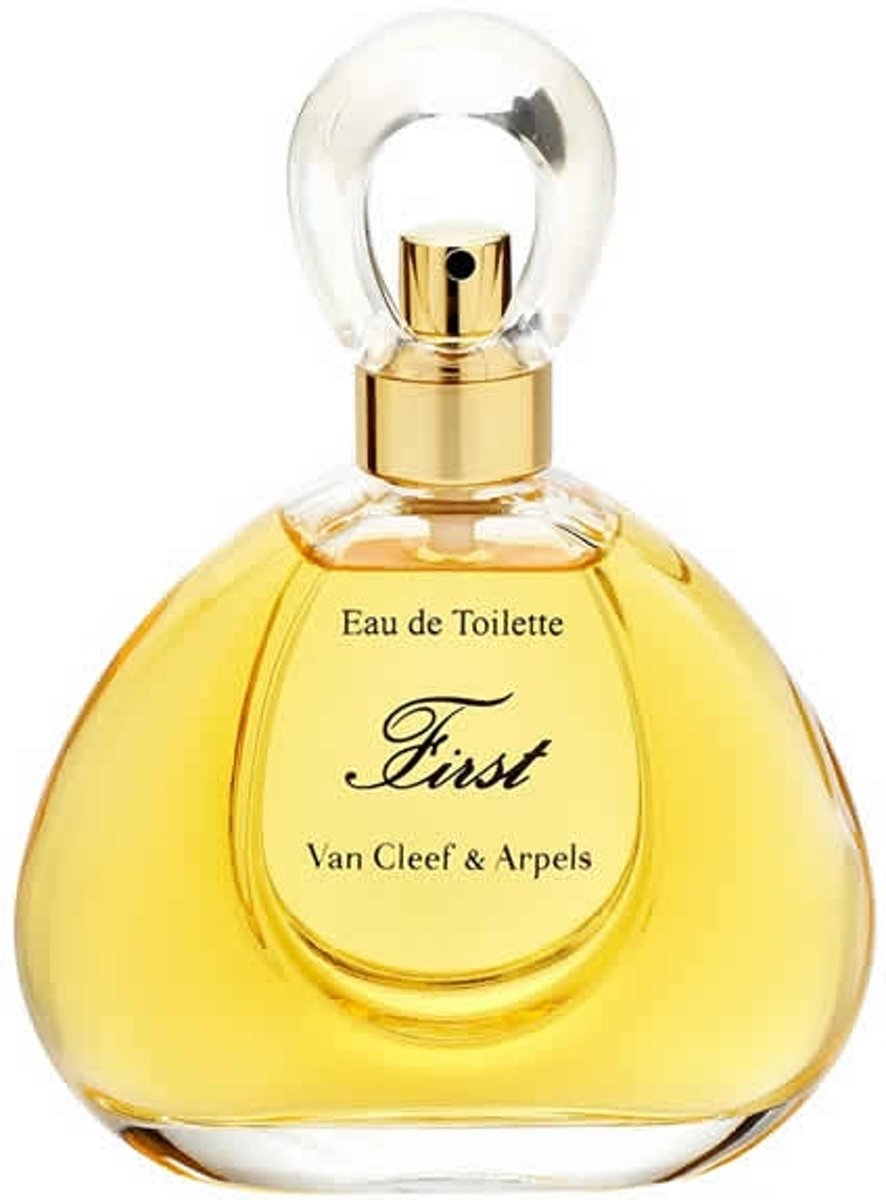 MULTI BUNDEL 2 stuks Van Cleef & Arpels First Eau De Toilette Spray 100ml