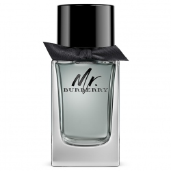 Burberry Mr. Burberry Eau de Toilette Spray 100 ml