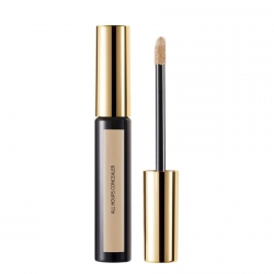 Yves Saint Laurent Encre de Peau All Hours Concealer Concealer 5 ml