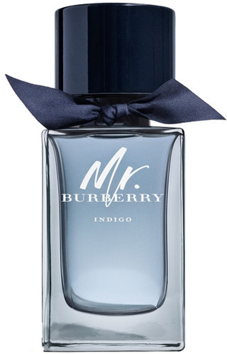 Burberry - Mr. Burberry Indigo - Eau de Toilette Spray 100 ml