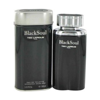 Ted Lapidus Black Soul eau de toilette 100 ml